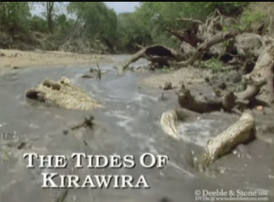 The Tides of Kirawira